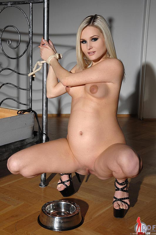 Glamour pregnant nude blonde