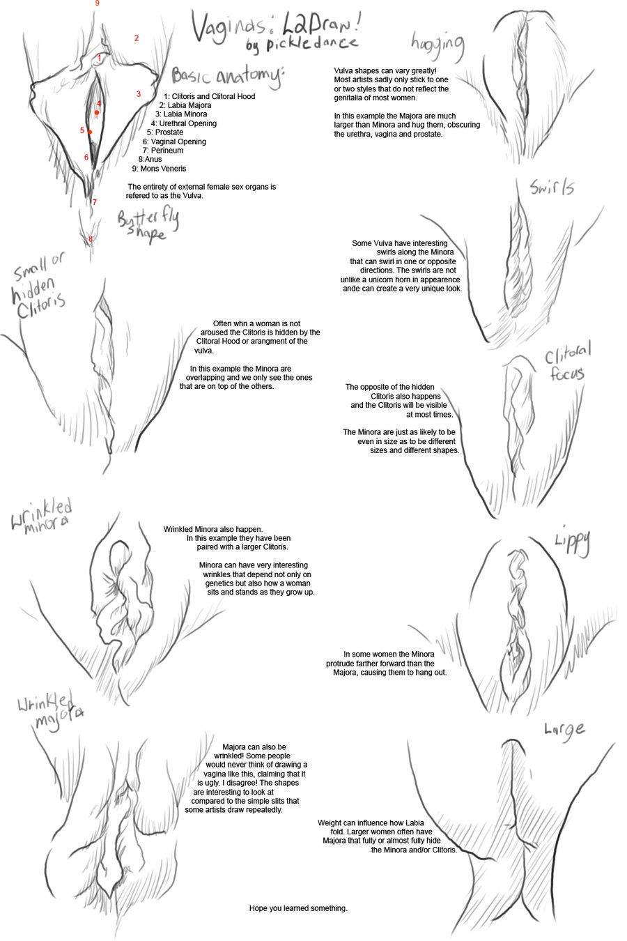 Naked women pussy drawing